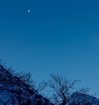 〇一 葉月